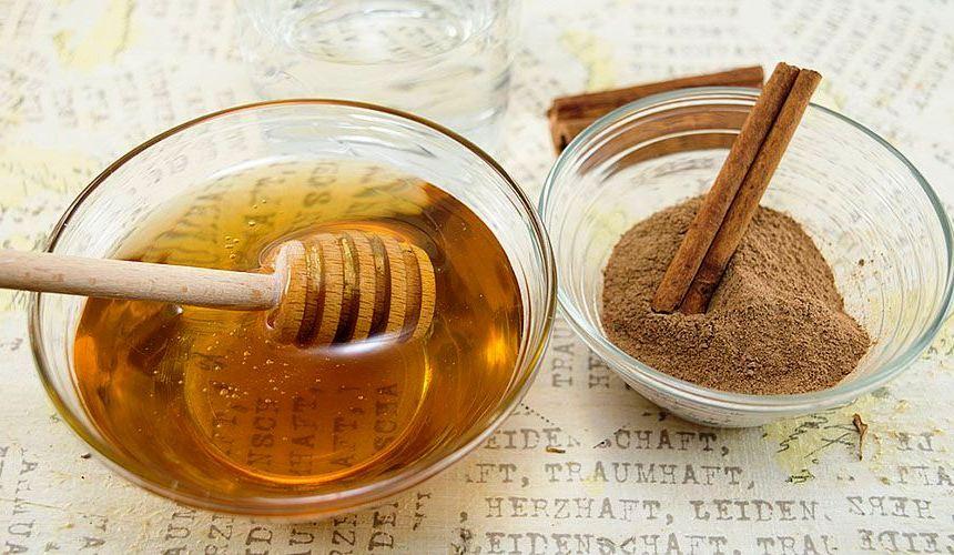 Лечение медом и корицей от хронических заболеваний