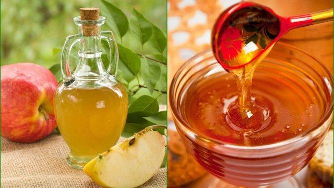 Мед, яблочный уксус и чеснок