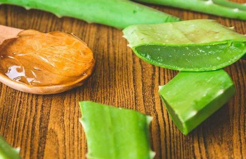 Народный рецепт настойки (мед, алоэ) от гастрита и язвы