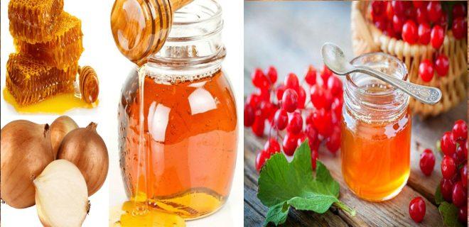 Рецепт от бронхита (мед, калина, лук)