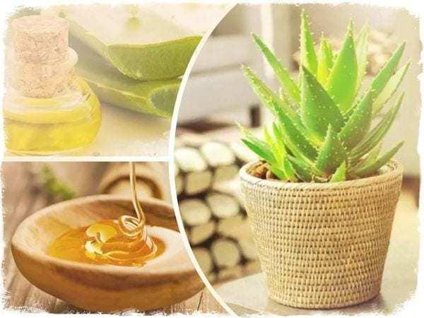 Маска для смягчения кожи на локтях (мед, алоэ, оливковое масло)