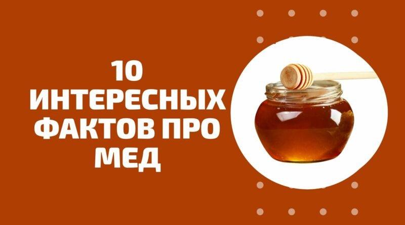 10 интересных фактов про мед
