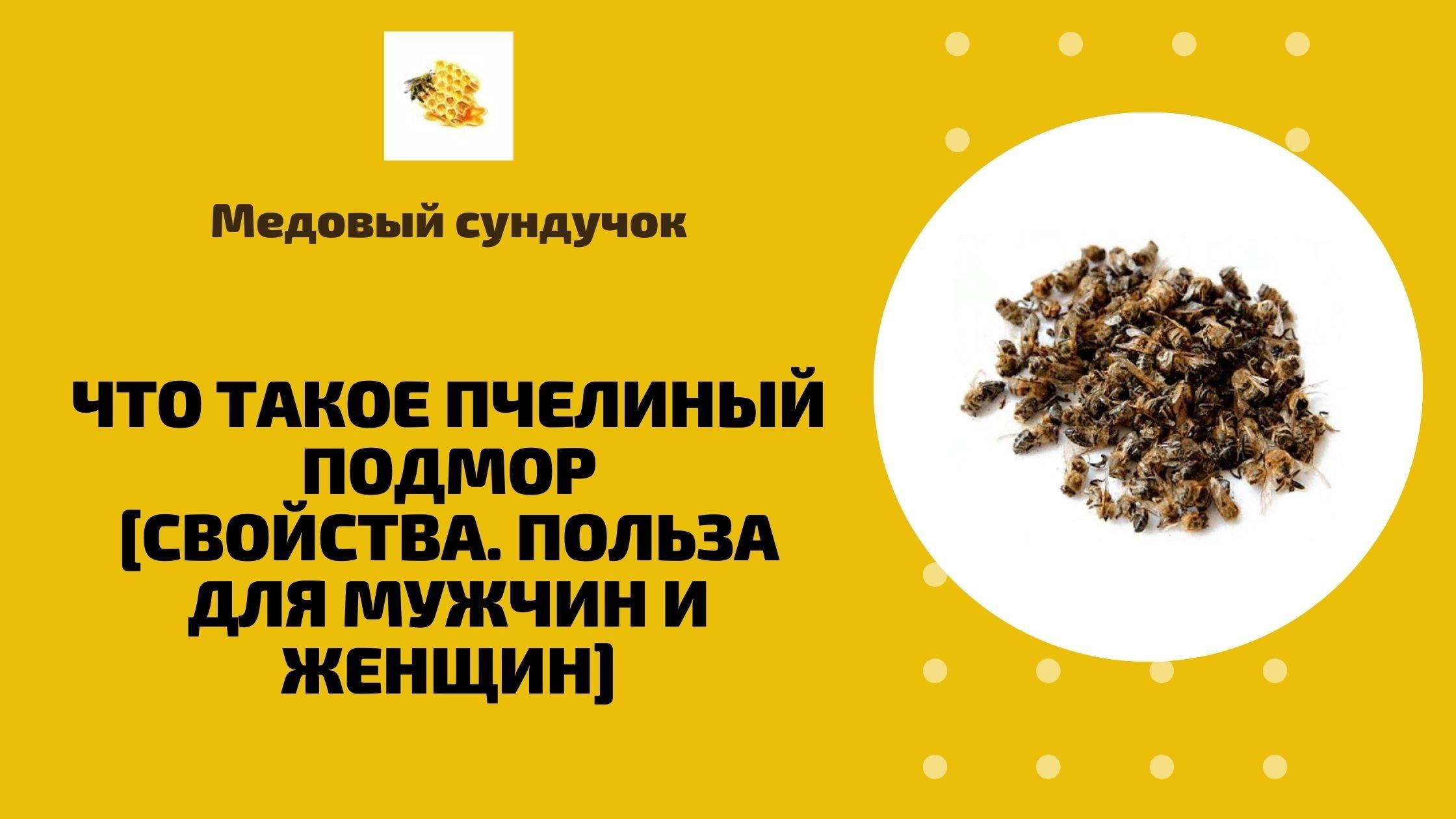 Что такое пчелиный подмор[Свойства. Польза для мужчин и женщин]