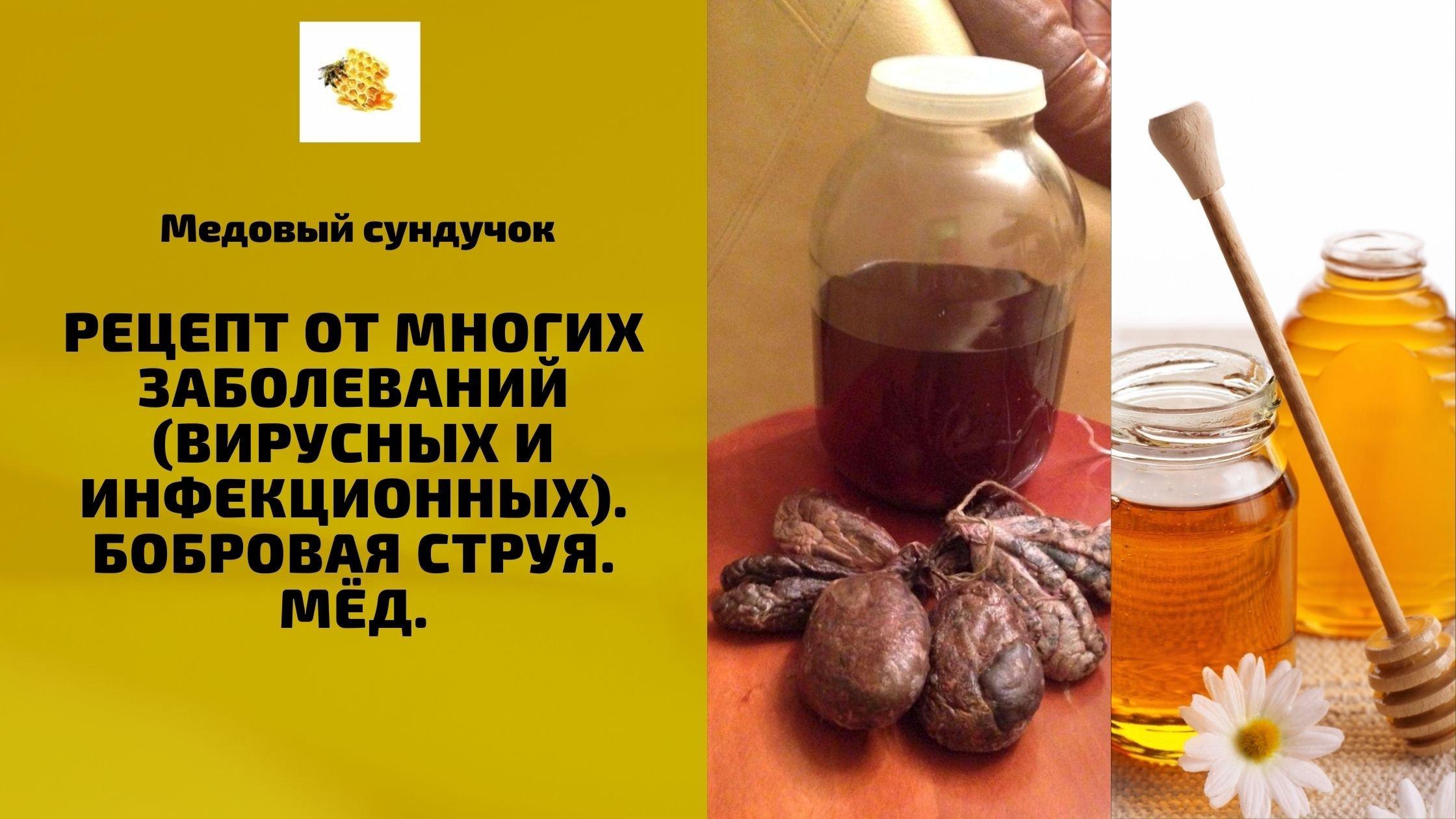Настойка для профилактики вирусных и инфекционных заболеваний(Бобровая струя и мёд)