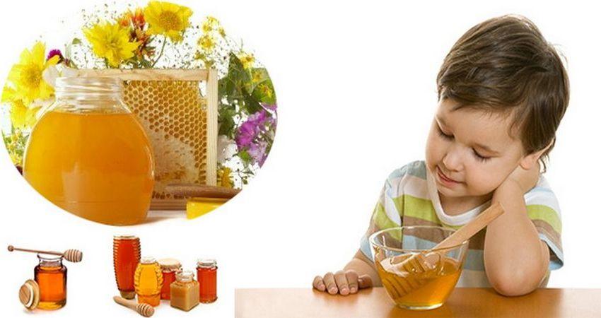 Какой мед лучше для ребенка?