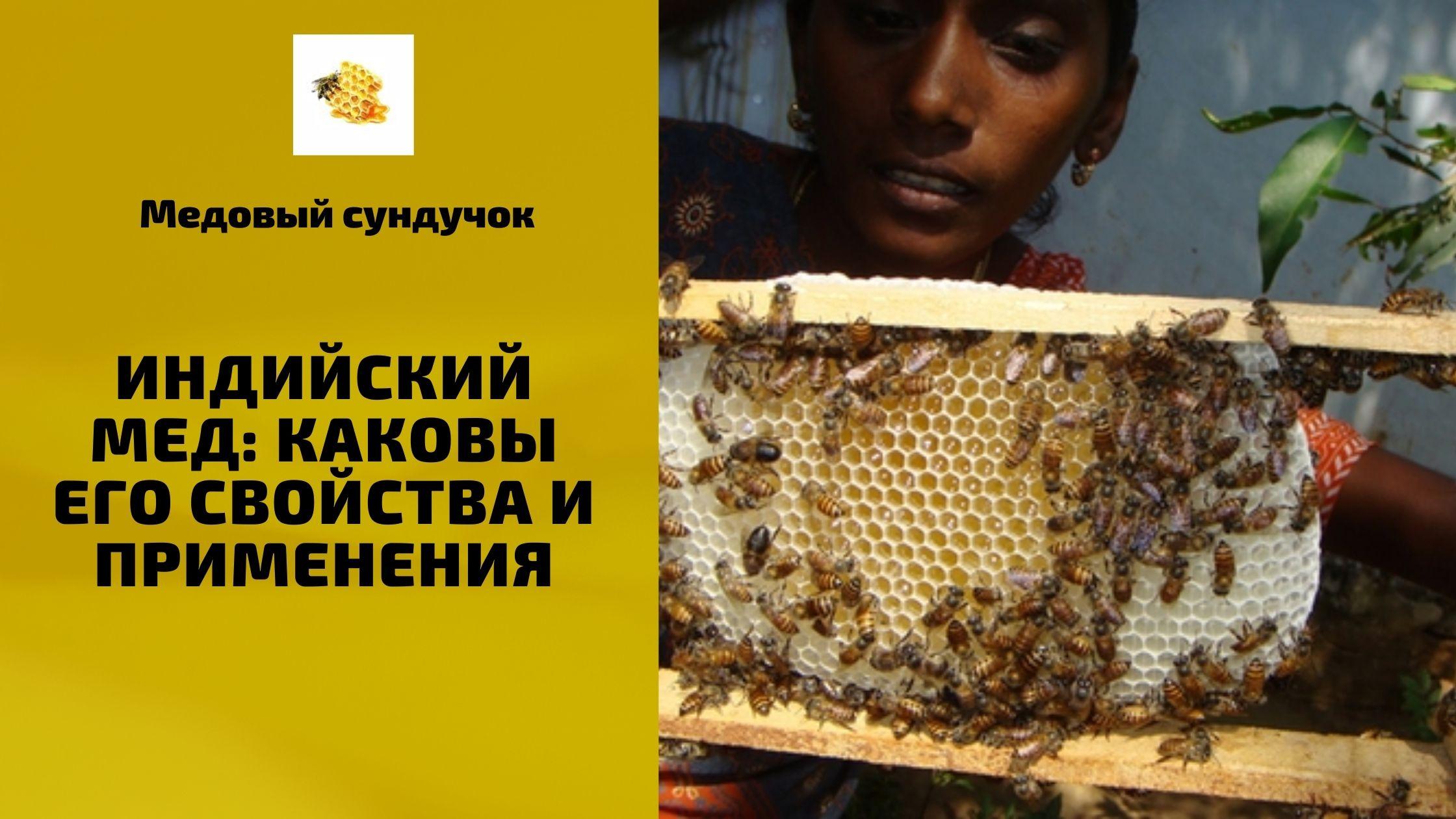 Индийский мед: каковы его свойства и применения
