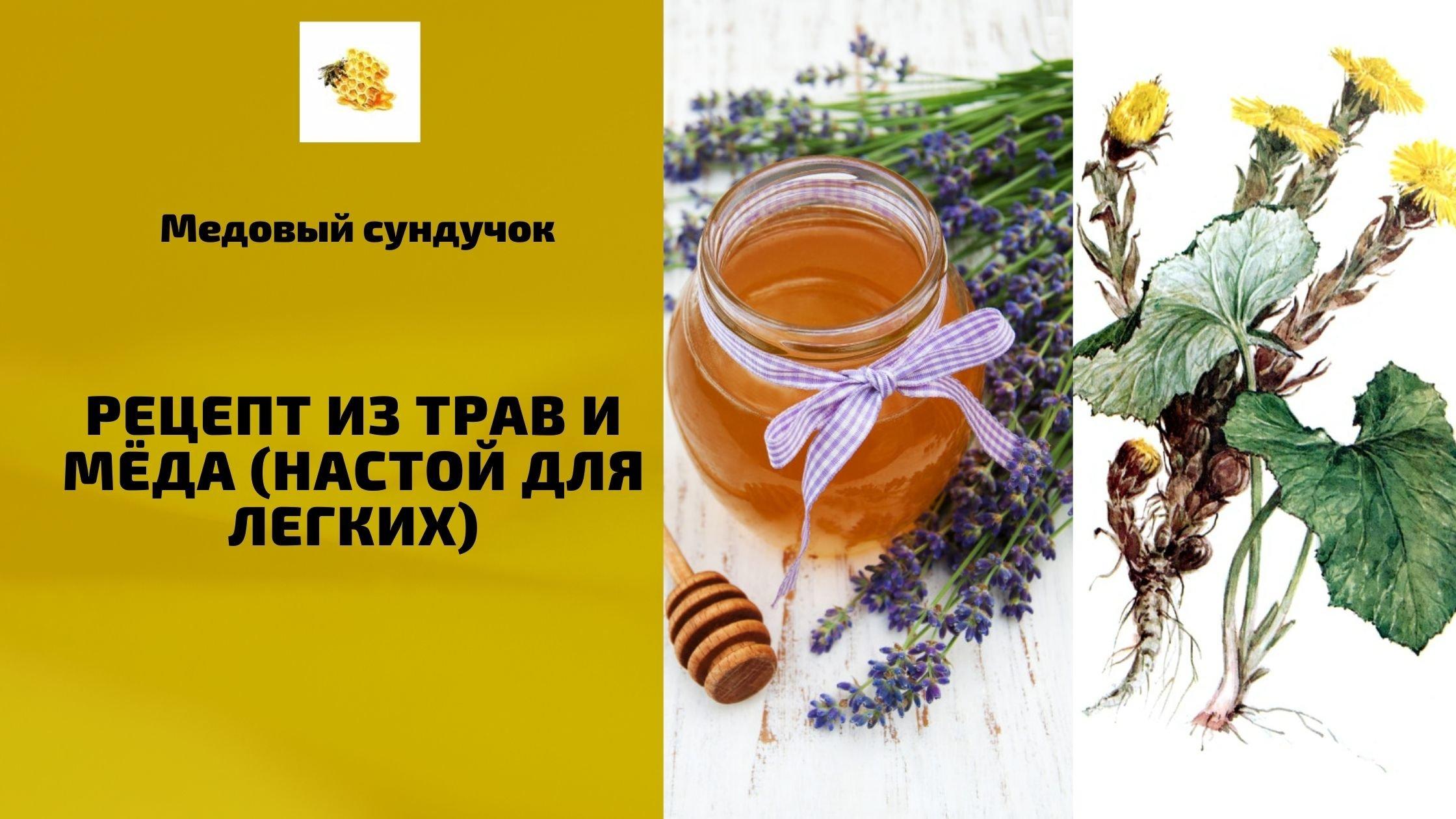 Рецепт из трав и мёда (настой для легких)