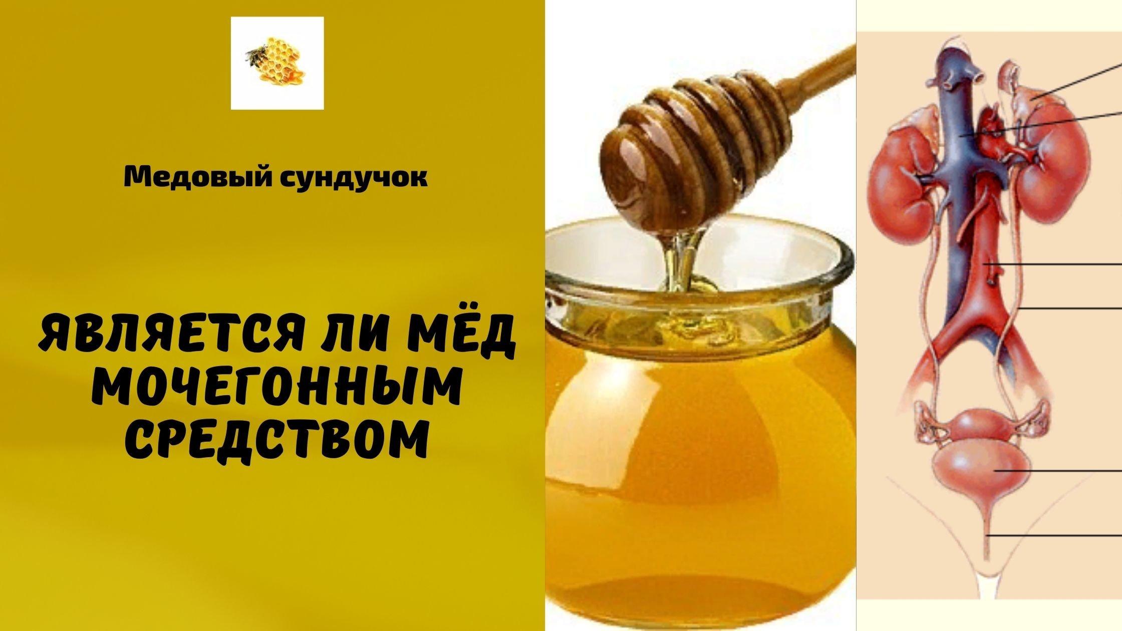 является ли мёд мочегонным средством