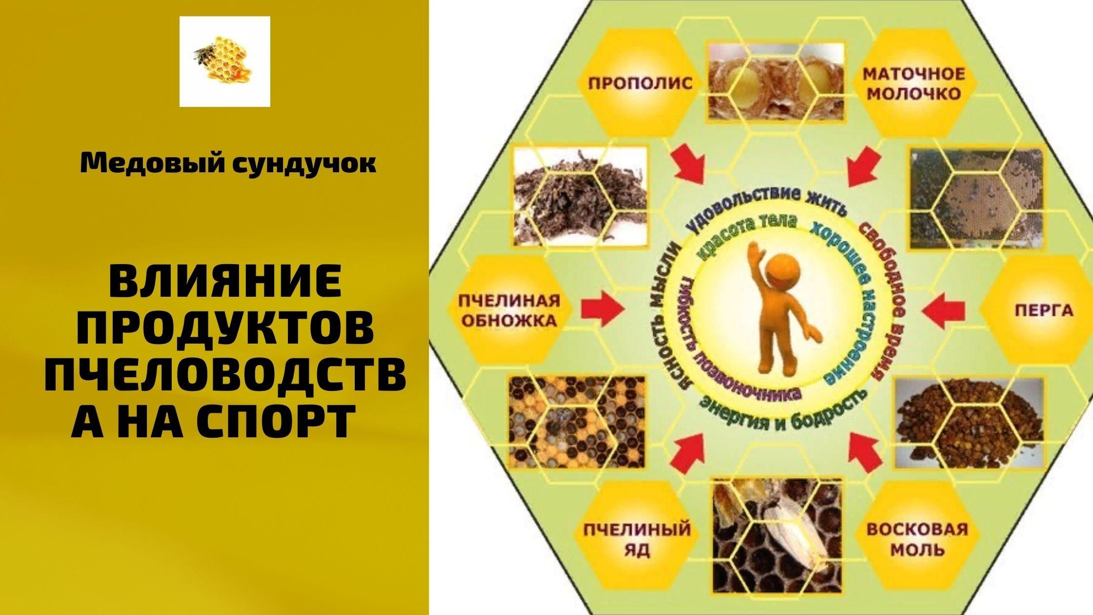 Влияние продуктов пчеловодства на спорт