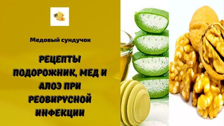Рецепты подорожник, мед и алоэ при реовирусной инфекции