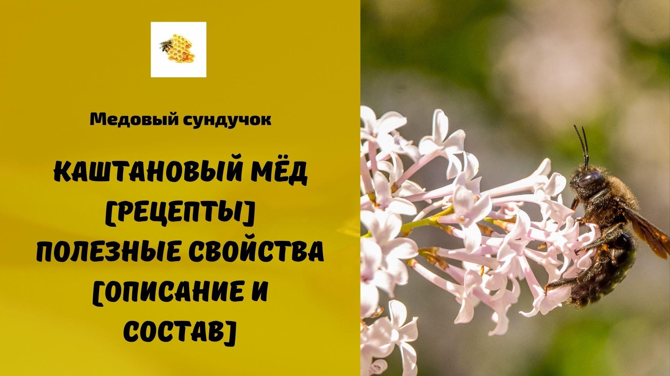 Каштановый мёд [Рецепты] Полезные свойства [Описание и состав]