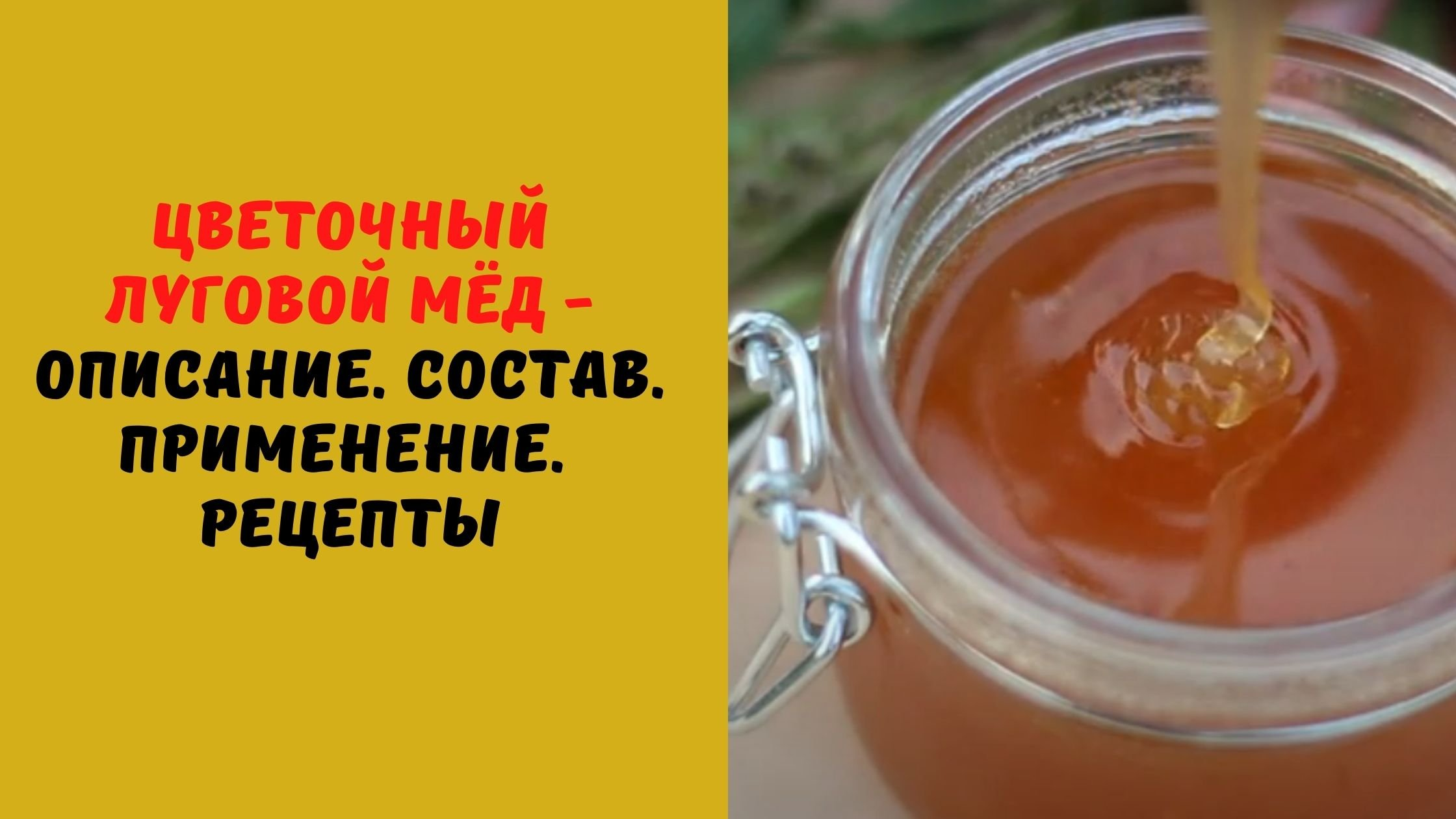 Цветочный луговой мёд - Описание. Состав. Применение.  Рецепты