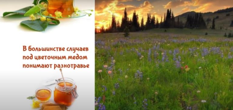 Цветочный мёд — Описание. Состав. Виды. Свойства. Рецепты