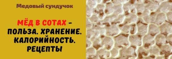 Мёд в сотах - Польза. Хранение. Калорийность. Рецепты