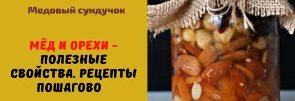 Мёд и орехи - полезные свойства. Рецепты пошагово