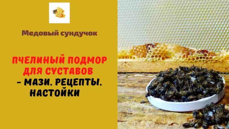 Пчелиный подмор для суставов — Мази. Рецепты. Настойки