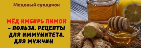 Мёд имбирь лимон - Польза. Рецепты для иммунитета. Для мужчин
