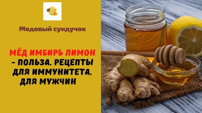 Мёд имбирь лимон — Польза. Рецепты для иммунитета. Для мужчин