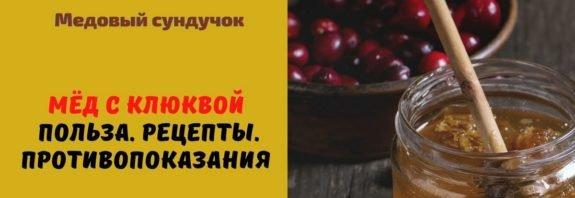 Мёд с клюквой - Польза. Рецепты. Противопоказания