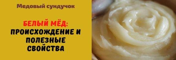 Белый мёд: происхождение и полезные свойства
