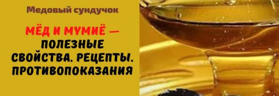 Мёд и мумиё - Полезные свойства. Рецепты. Противопоказания