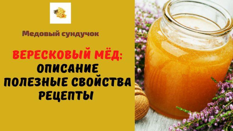 Вересковый мёд: Описание. Состав. Полезные свойства. Рецепты