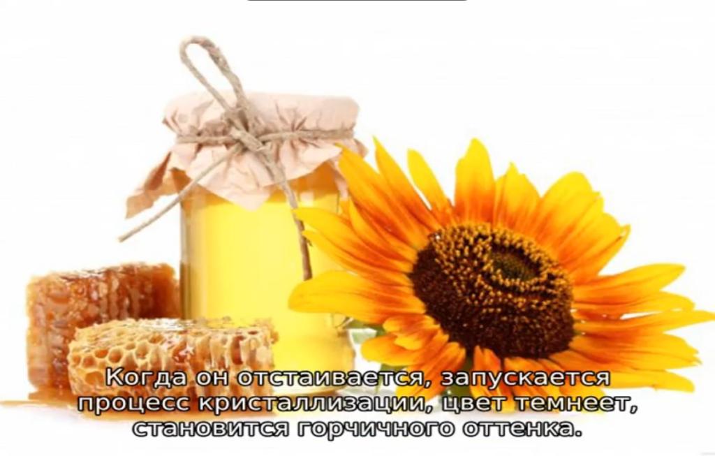 кристаллизация подсолнечного мёда