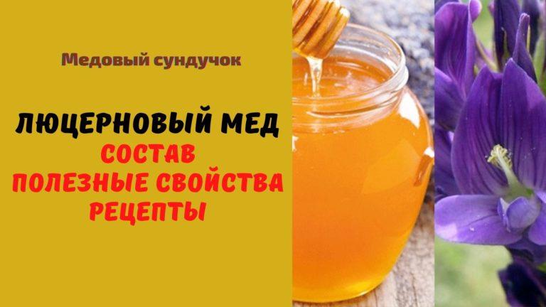 Люцерновый мёд: Описание. Полезные свойства. Рецепты и применение