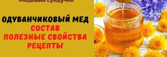 Одуванчиковый мёд: Описание. Полезные свойства. Рецепты