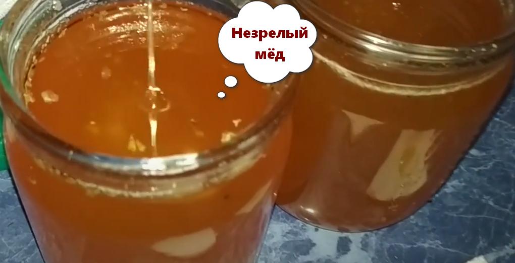 незрелый мёд