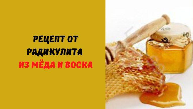 Рецепт от радикулита из мёда и воска