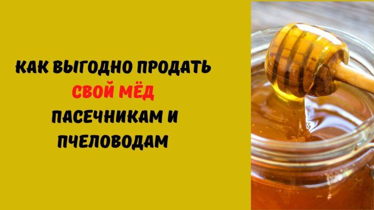 Как выгодно продать мёд пасечникам и пчеловодам?